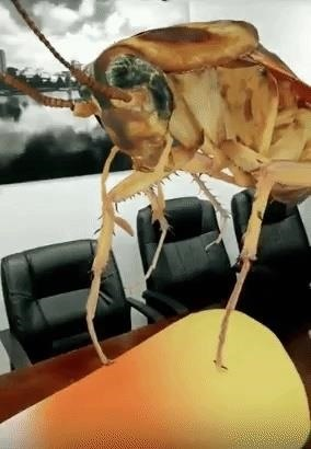 New York Times Halloween Edition Uses Augmented Reality Bugs to Scare & Educate