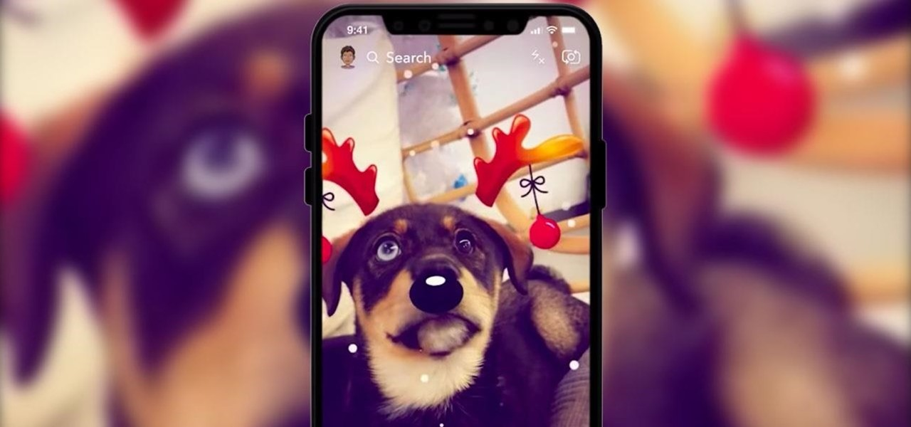 Snapchat's New Augmented Reality Trick Is Literally for the Dogs, Lets You Turn Your Pet into a Nerd or Reindeer