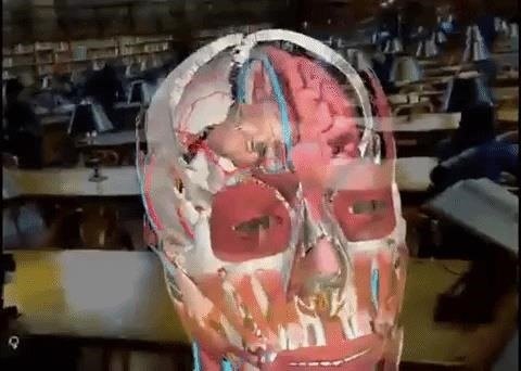 Medivis App for Magic Leap One & HoloLens Can you study the human anatomy of augmented reality