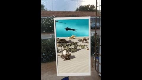 Apple AR: Developer Opens Portal to Underwater World with ARKit