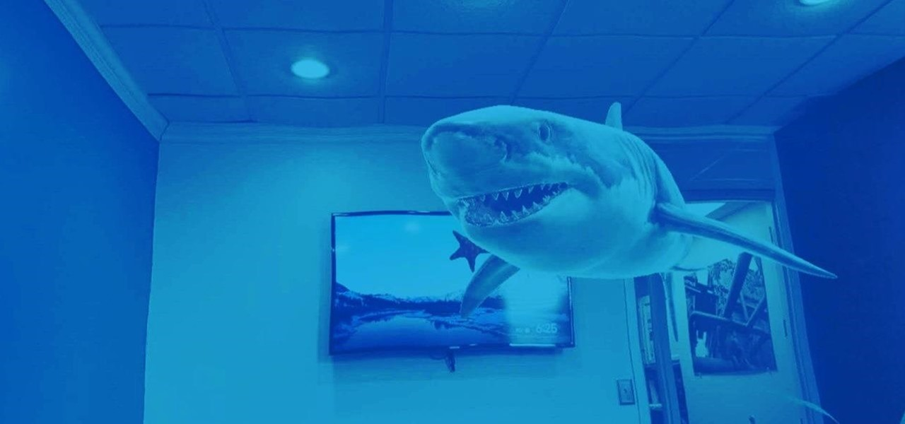 Dive into Shark Week with These Snapchat AR Lenses